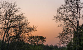 Sonnenuntergang im corbett Lizenzfreies Stockfoto