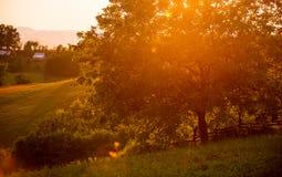 Sonnenuntergang im Dorf, Bauernhöfe im Sommer Lizenzfreie Stockfotografie