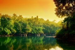 Sonnenuntergang im Dschungel Stockfotos