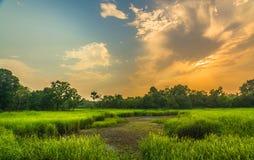 Sonnenuntergang im dudhua Lizenzfreies Stockbild