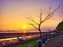 Sonnenuntergang im Flussufer stockfotos