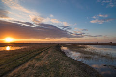 Sonnenuntergang im Frühjahr Lizenzfreies Stockfoto