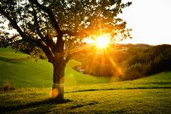 Sonnenuntergang im Land Stockfoto