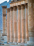 Sonnenuntergang im Palmyra lizenzfreie stockfotografie