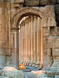 Sonnenuntergang im Palmyra lizenzfreie stockfotos
