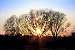 Sonnenuntergang im Park des Caffarella Lizenzfreie Stockfotos