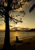 Sonnenuntergang im tropischen Strand von Tropeninsel Sainte Anne - Guadeloupes Stockbild