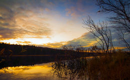 Sonnenuntergang im Waldsee Stockfotos