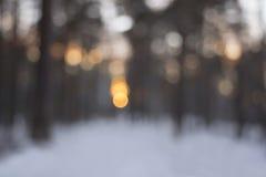 Sonnenuntergang im Winterwald - verwischen Sie bokeh Hintergrund Lizenzfreies Stockfoto