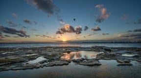 Sonnenuntergang an La perouse, Sydney lizenzfreies stockbild