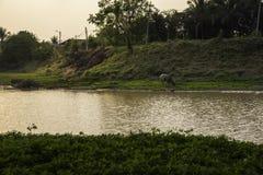 Sonnenuntergang-Lagune Lizenzfreie Stockfotografie