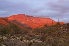 Sonnenuntergang-Leuchte auf einem Wüsten-MESA Stockbild