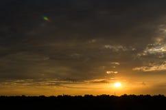 Sonnenuntergang mit Baumschattenbild Stockbilder