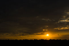 Sonnenuntergang mit Baumschattenbild Lizenzfreies Stockfoto