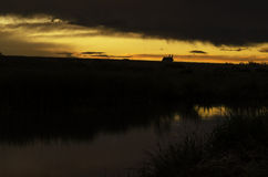 Sonnenuntergang mit Hausschattenbild Stockbild