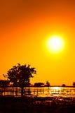 Sonnenuntergang mit kandelia candel im Meer Lizenzfreie Stockfotos
