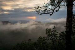 Sonnenuntergang mit nebelt, Wolken und ein Baum ein Stockfoto