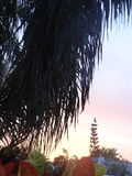 Sonnenuntergang mit Perspektive lizenzfreies stockfoto