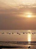 Sonnenuntergang mit Pferd und Reiter Lizenzfreie Stockfotos