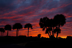 Sonnenuntergang mit rotem Himmel Stockbilder