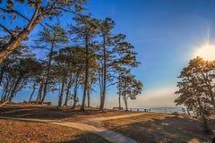 Sonnenuntergang mit Schattenbildzeit im Sommer Lizenzfreies Stockfoto