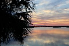 Sonnenuntergang mit Wasser- und Palme lizenzfreie stockfotos