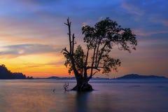 Sonnenuntergang Moment5 Batam Bintan wonderfull Indonesien Stockbild