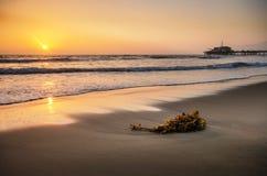 Sonnenuntergang am Monica-Strand Lizenzfreie Stockfotografie