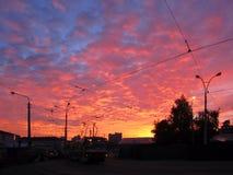 Sonnenuntergang morgen Schwarze Straßenlaterne, Tram auf Straßenbahn Stockfotografie