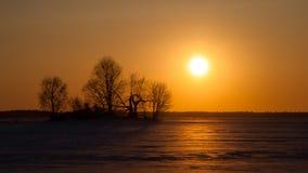 Winter-Sonnenuntergang Lizenzfreie Stockbilder