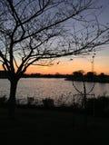 Sonnenuntergang in Northside-Park stockbild