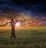 Sonnenuntergang oder Sonnenaufgang Stockfotos