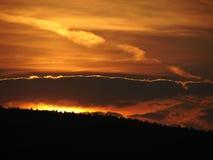 Sonnenuntergang oder Waldbrand Stockbilder