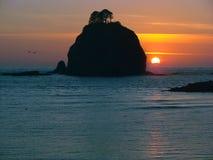 Sonnenuntergang-olympischer Nationalpark Lizenzfreies Stockbild