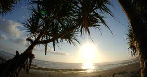Sonnenuntergang-Ozean 4k stock video footage