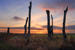 Sonnenuntergang Penrith NSW Australien Lizenzfreies Stockbild