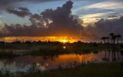 Sonnenuntergang-Savannen lizenzfreies stockbild