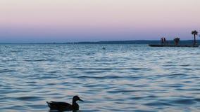 Sonnenuntergang in See Balaton Lizenzfreie Stockfotos