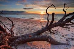 Sonnenuntergang-silberner Strand, Australien Lizenzfreie Stockfotos