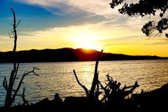 Sonnenuntergang silhouettiert die Bäume an Strand Chidiya Tapu Stockfotos