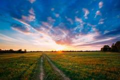Sonnenuntergang, Sonnenaufgang über ländlicher Feld-Wiese Heller drastischer Himmel Stockfoto