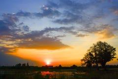 Sonnenuntergang am Stadtzentrum Lizenzfreie Stockfotografie