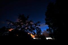 Sonnenuntergang, sternenklarer Himmel und Schattenbilder von Bäumen Stockfoto