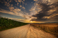 Sonnenuntergang, Straße und Felder Stockbilder