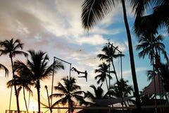 Sonnenuntergang-Strand-Akrobatik mit Palmtree Sillouettes lizenzfreies stockfoto