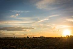 Sonnenuntergang am Sumpf Stockbilder