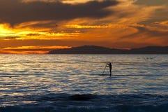 Sonnenuntergang-Surfer Lizenzfreies Stockbild