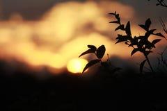 Sonnenuntergang-Tapete Lizenzfreies Stockbild