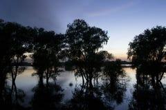 Sonnenuntergang und Bäume im Wasser Lizenzfreie Stockfotografie