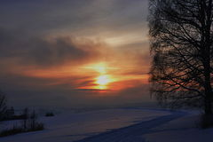 Sonnenuntergang und Baumschattenbild lizenzfreies stockbild